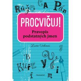 Procvičuj - Pravopis podstatných jmen  | Lucie Víchová