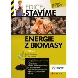 Energie z biomasy | Karel Murtinger, Jiří Beranovský