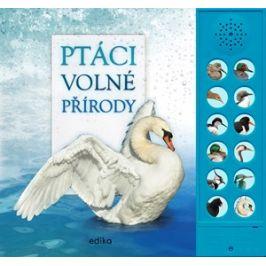 Ptáci volné přírody | Hana Marsault, Andrea Pinnington, Caz Buckingham