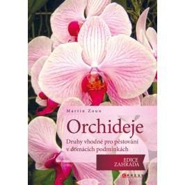 Orchideje - druhy vhodné pro pěstování v domácích podmínkách | Martin Zoun