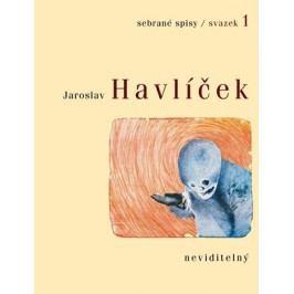 Neviditelný | Jaroslav Havlíček