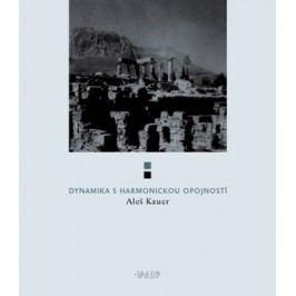 Dynamika s harmonickou opojností | Aleš Kauer