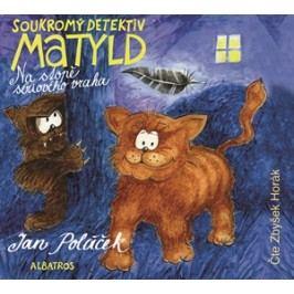 Soukromý detektiv Matyld (audiokniha pro děti) | Jan Poláček
