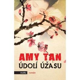 Údolí úžasu   Amy Tan