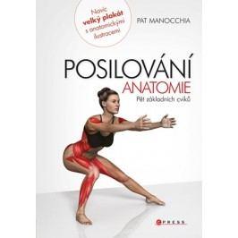 Posilování - anatomie | Pat Manocchia