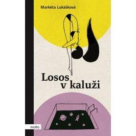 Losos v kaluži | Markéta Lukášková