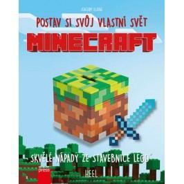 Minecraft: postav si svůj vlastní svět | Joachim Klang