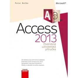 Microsoft Access 2013 Podrobná uživatelská příručka | Peter Belko