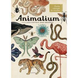 Animalium | Jenny Broomová, Katie Scottová