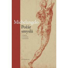 Požár smyslů |  Michelangelo