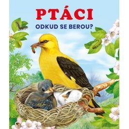 Ptáci | kolektiv, kolektiv
