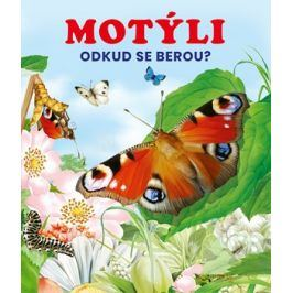 Motýli   kolektiv, kolektiv