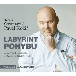 Labyrint pohybu (audiokniha) | Pavel Kolář, Renata Červenková, Vasil Fridrich, Romana Růžičková