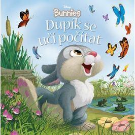 Disney Bunnies - Dupík se učí počítat | kolektiv