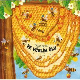 Co se děje ve včelím úlu | Petra Bartíková, Martin Šojdr (Puk-Puk)