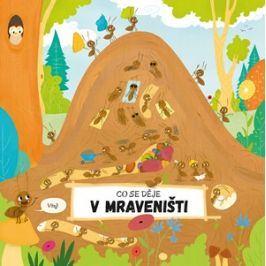 Co se děje v mraveništi | Petra Bartíková, Magdalena Takáčová
