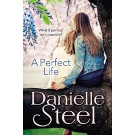 APerfectLife-SteelDanielle