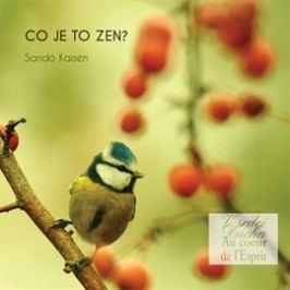 Co je to Zen?