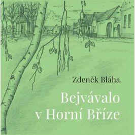 Bejvávalo v Horní Bříze - Zdeněk Bláha